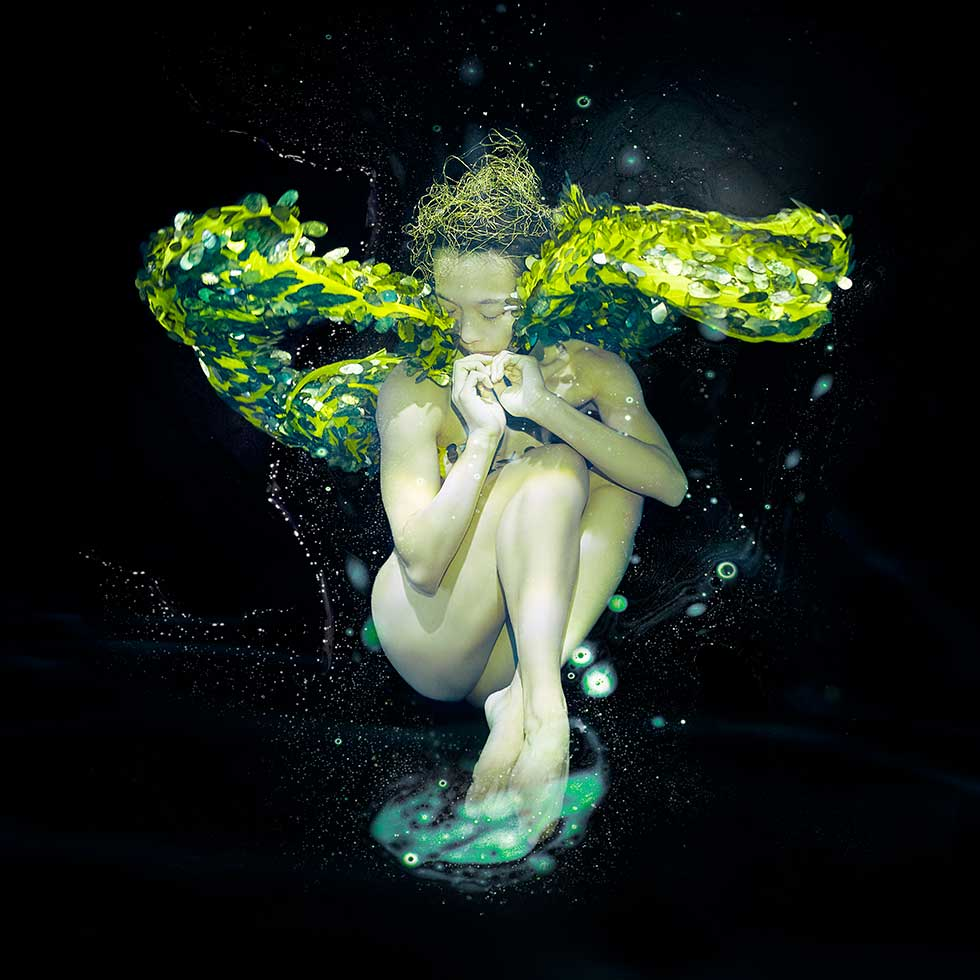 With glittering feathers and scales she dances in the black water as if rising out of the ashes. This series of images was inspired by the Haenyeo or 'sea women' of South Korea who dive fearlessly to harvest and look after the ocean well into old age.