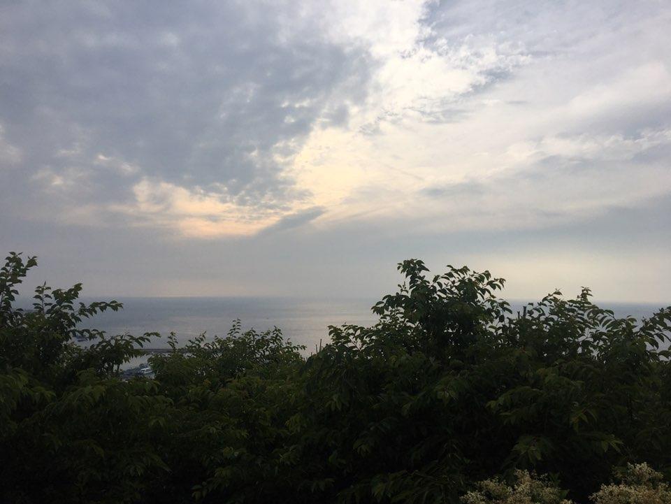 Jeju_gabia_01